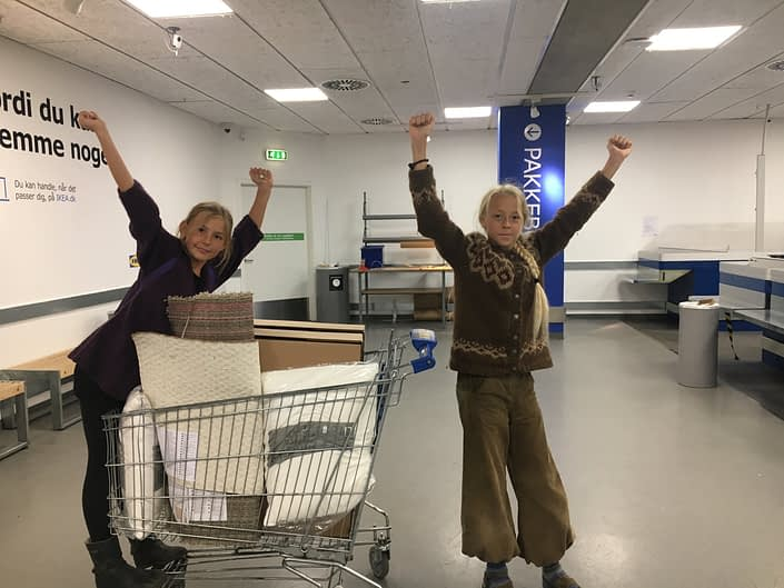 We survived IKEA!